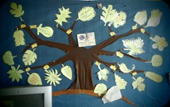 Role Tree