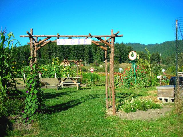 permaculture kids garden WeTheTrees